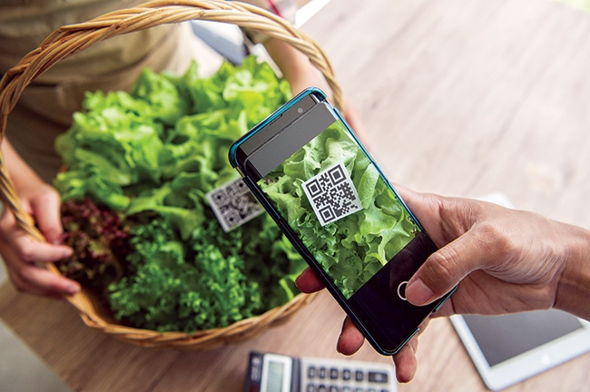 Why should enterprises apply Blockchain to food traceability?